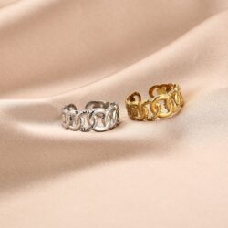 chain ring zilver goud